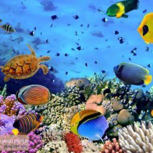 Tranh giấy dán tường 3d phong cảnh biển