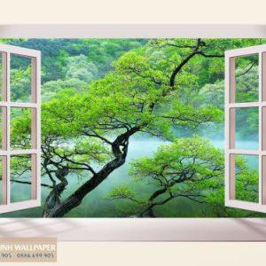 giấy dán tường cửa sổ 3d canh quang xanh