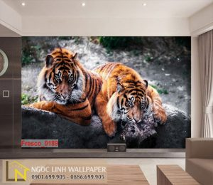 tranh dán tường 3d hổ