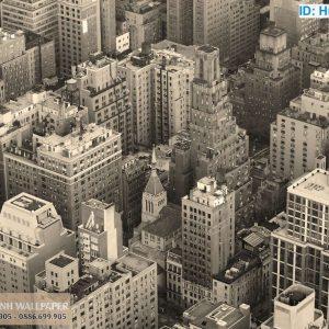 giấy dán tường 3d trắng đen thành phố New York