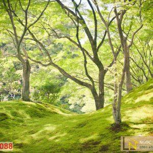Tranh giấy dán tường 3d thiên nhiên rừng Epping Forest
