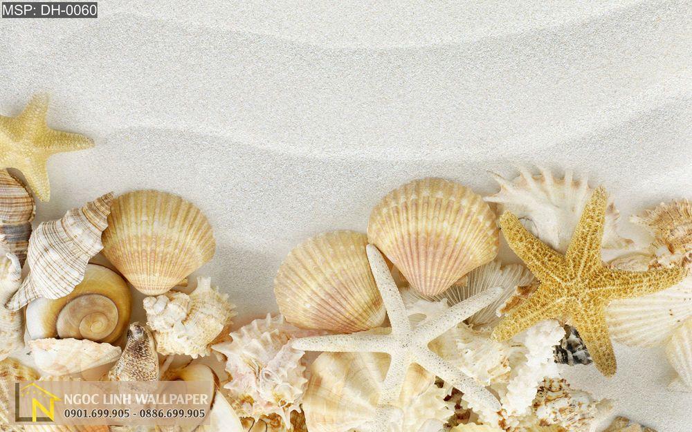 Tranh 3d ốc biển