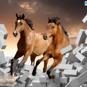 Tranh dán tường 3d ngựa đẹp