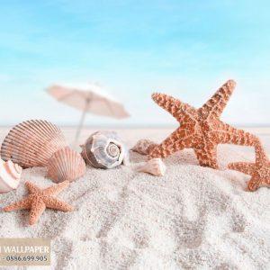 Tranh 3d phong cảnh biển ốc và sao biển