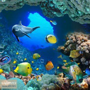 Tranh 3d phong cảnh biển cá heo