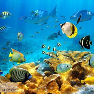 Tranh 3d phong cảnh biển đại dương kỳ thú