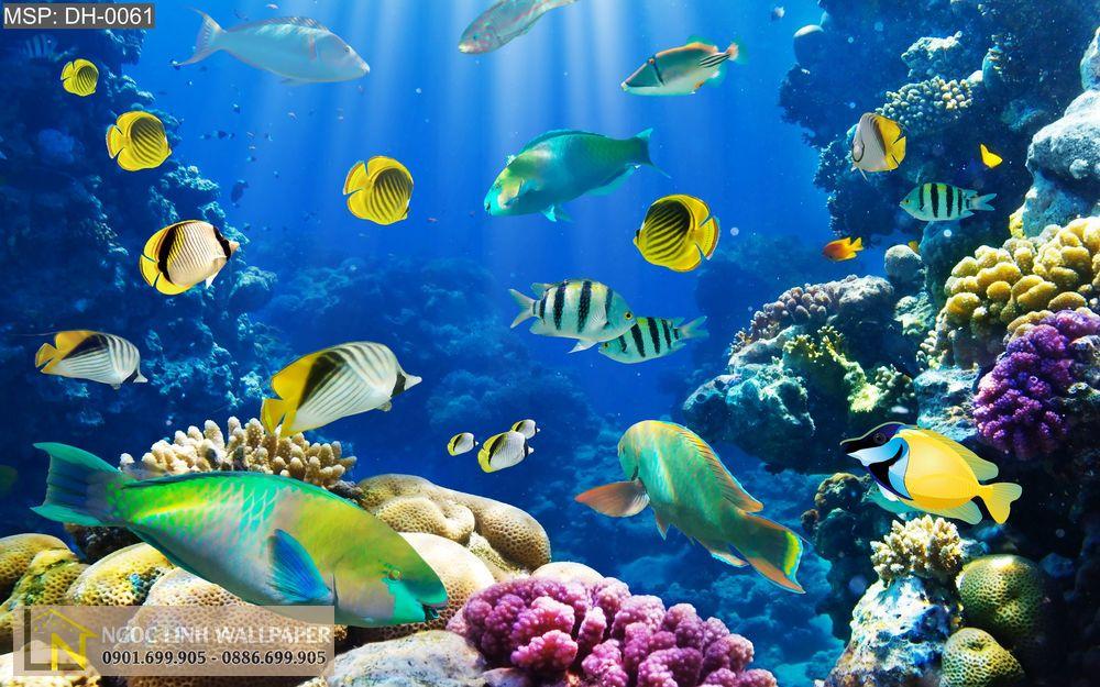 Tranh 3d đại dương muôn màu