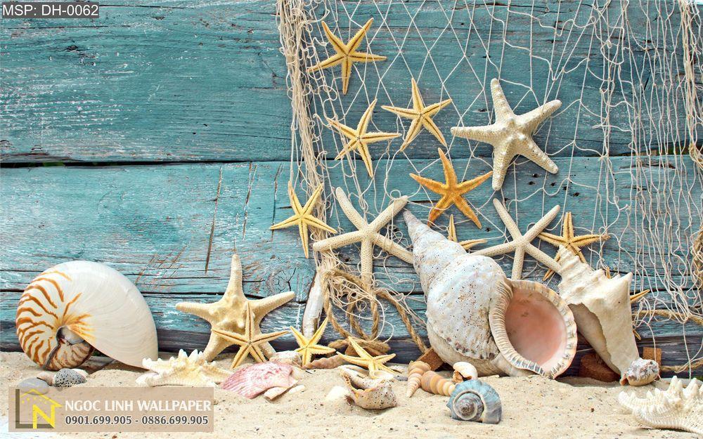 Tranh 3d phong cảnh biển lưới và ốc biển