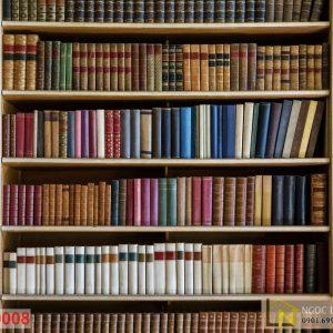 Tranh dán tường 3d cafe tủ sách