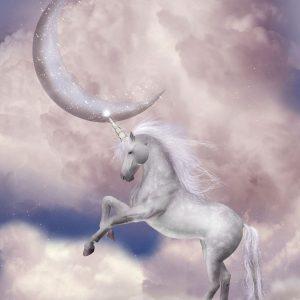 Tranh dán tường 3d động vật kỳ lân và mặt trăng