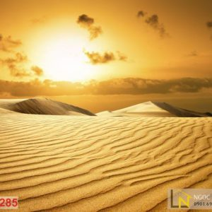Tranh 3d hoàng hôn sa mạc