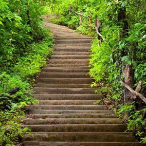 Tranh 3d khổ dọc bậc thang lên dốc