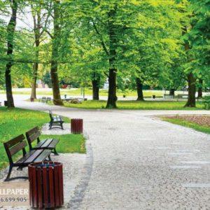 Tranh dán tường 3d thiên nhiên công viên xanh
