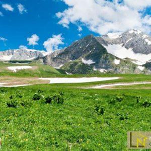 Tranh 3d dán tường thiên nhiên đồi núi và đồng cỏ