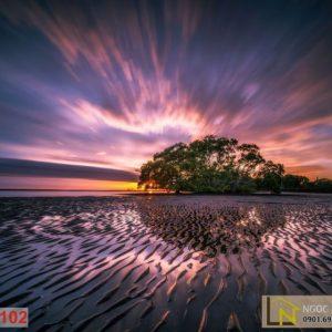 Tranh 3d thiên nhiên hoàng hôn tại vùng nước mặn