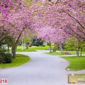 Tranh 3d vườn hoa anh đào ở công viên