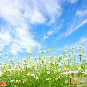Tranh 3d vườn hoa hướng dương